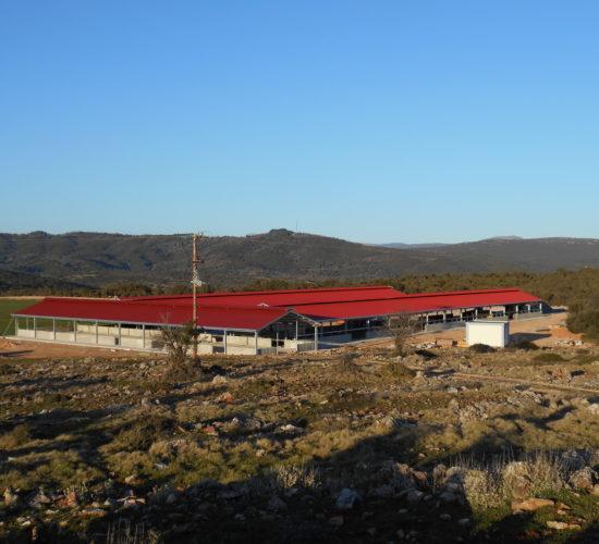 2 Προβατοστάσια 9,80*66 -Αίθουσα Αρμεκτηρίου μαζί με ψύξη γάλακτος 9,80*44,   Αρκαδική Οικολογική Φάρμα